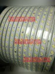 Lampu LED Strip 2Baris Chip 5730 White 100Meter