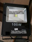 Lampu Tembak LED 100 watt Duralux IP66