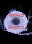 LED Strip IP68 Chip 5050 Pure White